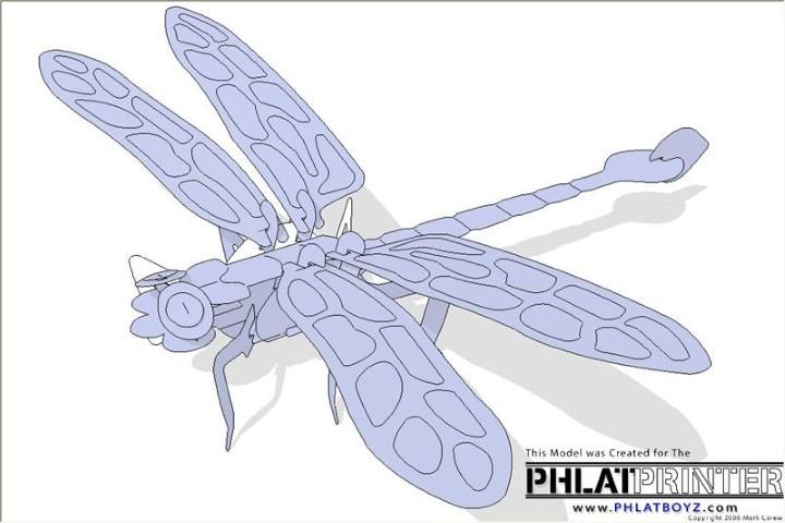 3167=1160-DragonflyPic1 (Small).jpg