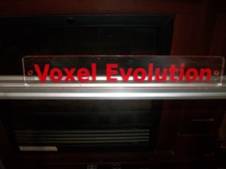 Voxel Evolution
